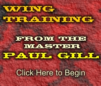 Wing Training From Paul Gill